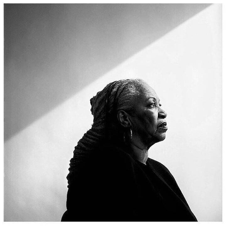 "Toni Morrison // ""You wanna fly, you got to give up the shit that weighs you down."""