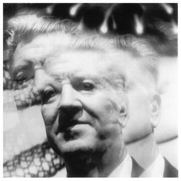 "David Lynch // ""I learned that just beneath the surface there's another world, and still different worlds as you dig deeper. I knew it as a kid, but I couldn't find the proof. It was just a kind of feeling. There is goodness in blue skies and flowers, but another force...a wild pain and decay...also accompanies everything."""